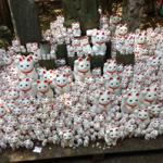 豪徳寺に奉納された招福猫児