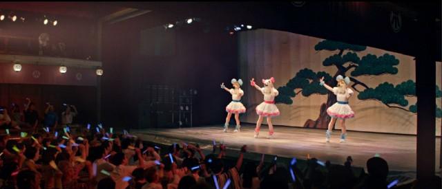 canine idol performance in Akita