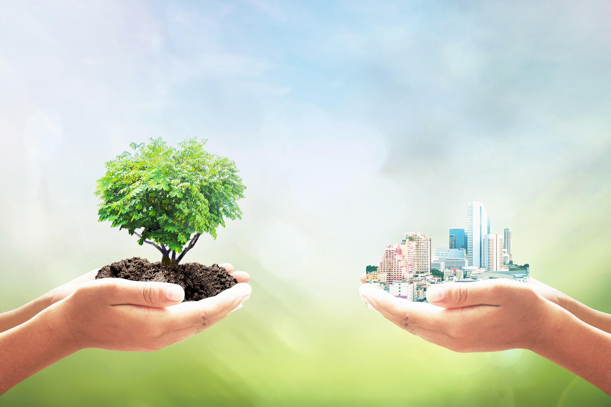 CSV/CSR/SDGs/ ダイバーシティ&インクルージョン